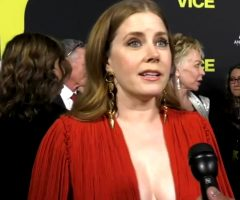 Amy Adams' Beautiful Cleavage