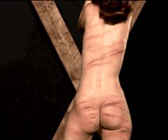 Brutal whipping