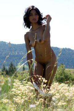 Angel Constance