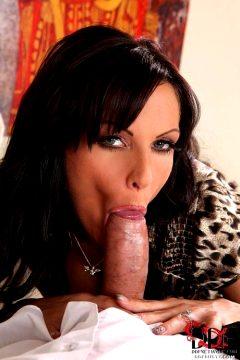 Majestic head job compilation by 'Erotic blowjob photos'